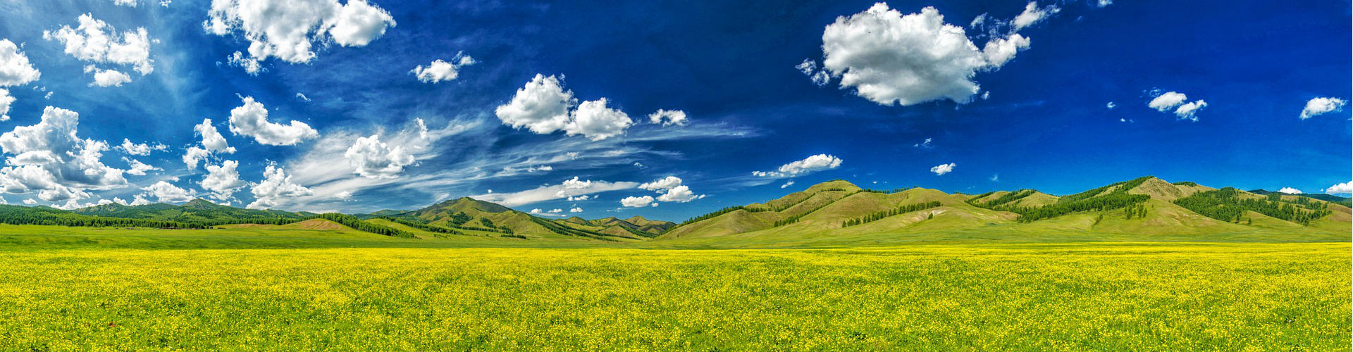 the-valley-of-flowers-2386198_1920_ok